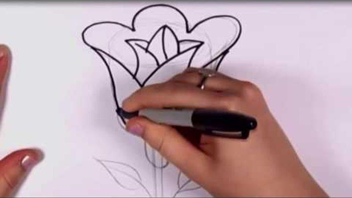 رسم وردة رسم ورد رسم زهرة