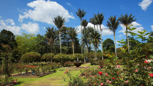 Ботанический сад Боготы, Колумбия