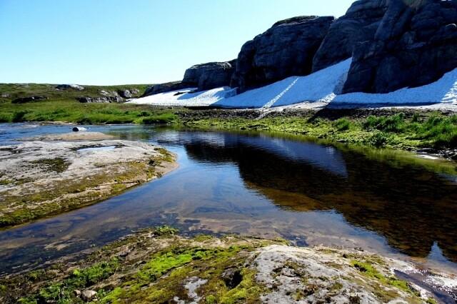 Ненецкий государственный природный заповедник, Россия