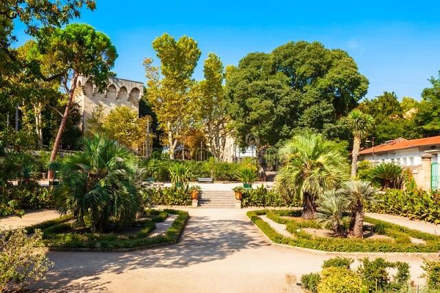 Ботанический сад Монпелье, Франция