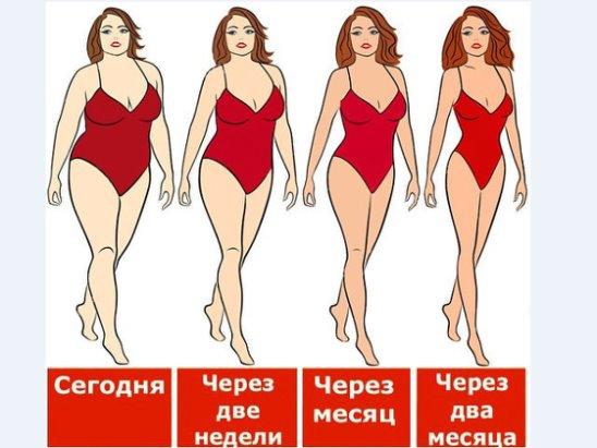 Правильное питание на неделю новосибирск r