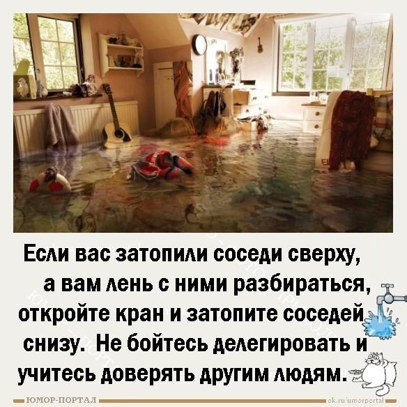 если вас затопили соседи