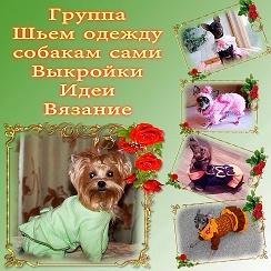 Юла братск одежда для собак