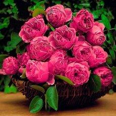 Молитвы на продажу цветов