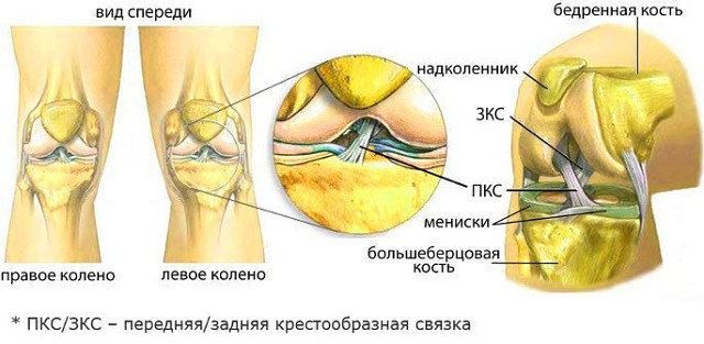 Как вылечить колени