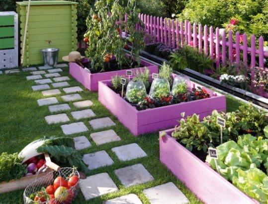 и огород может быть красивым фото