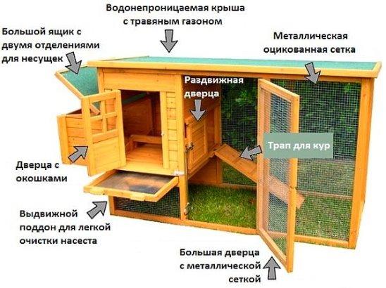 Домики для курей несушек