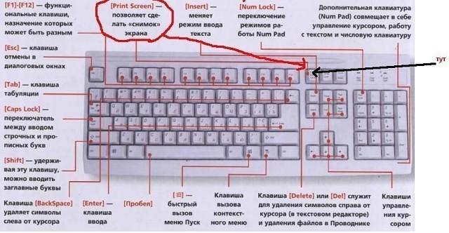 Где на клавиатуре находиться спейс