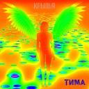 Тима - Диагностика