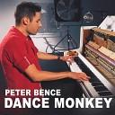Peter Bence - Dance Monkey