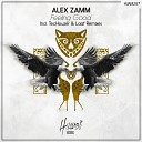 Alex Zamm - Feeling Good