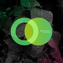 Sebastian Haas - Crawler Original Mix
