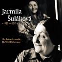 Jarmila ul kov feat CM Technik - Na janov j ho e
