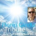 Florin Gindu - Somebody Bigger Than You and I