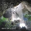 Fox in the Dark - Right Night for Love