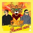 DNM Георгий Сенин - Рыжий кот