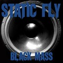 Static Fly - All in My Head