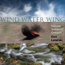 Don Latarski - Wind in Wings