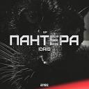 OPERSKIE - Черная Пантера