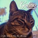 Gatino feat Indiependencia - A Qu Hora Se Van de Mi Casa feat Indiependencia