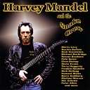 Harvey Mandel - Land of the Free