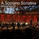 William D agostino - A Soprano Sonatina