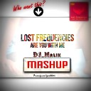 LoSt FreQueNcieS - ARE You WHIT ME (DJ_Malik Mash-Up)