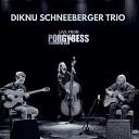 Diknu Schneeberger Trio - Krokus