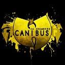 Canibus vs Wu Tang Clan - Wu Tang Clan Ain t Nuthing Ta Fuk Wit