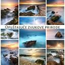 Relaxing Nature Sounds Collection - Duboko zelena uma
