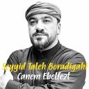 Seyyid Taleh Boradigahi - Ey vay Ruqeyye