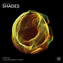 Fur Coat - Shades Johannes Brecht Remix