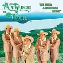 Los Andariegos del Norte - Amor Mio