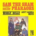 Sam The Sham And The Pharaohs - Shotgun