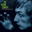 The Divine Comedy - Make It Easy On Yourself live