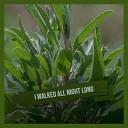 Albert King - I Walked All Night Long