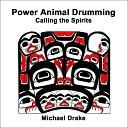Michael Drake - Turtle Shaker