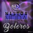 Nestor Neira - Si Hoy Fuera Ayer Pt 2