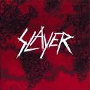 SLAYER - Beauty Through Order