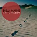 Steps to the Desert