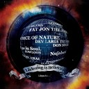 FAT JON THE AMPLE SOUL PHYSICIAN - Lost in Space