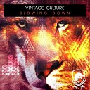 Vintage Culture - Slowing Down