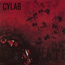 Cylab - Dented Halo Panel Beaten Remix By Skinjob