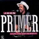 John Primer - Tore Down