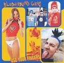 Bloodhound Gang - The Evils of Plancenta Hustling