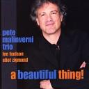 Pete Malinverni - Evocative