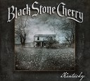 Black Stone Cherry - Fire And Water Accoustic