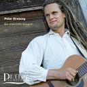 Peter Elmberg - Solen skiner