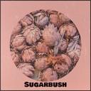 Doris Day - Sugarbush