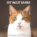 Cat Music Groove - Incredible Cats